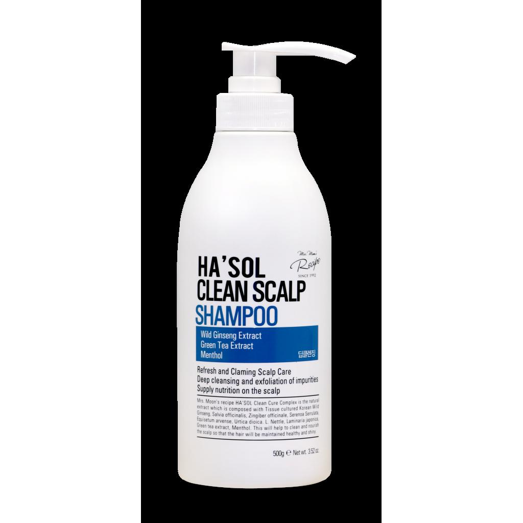 Шампунь для глубокой очистки HASOL Clean Shampoo