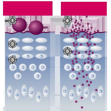 Molecula_Ramosu {focus_keyword} Домашний омолаживающий уход (Безинъекционная Мезотерапия в домашних условиях) Molecula